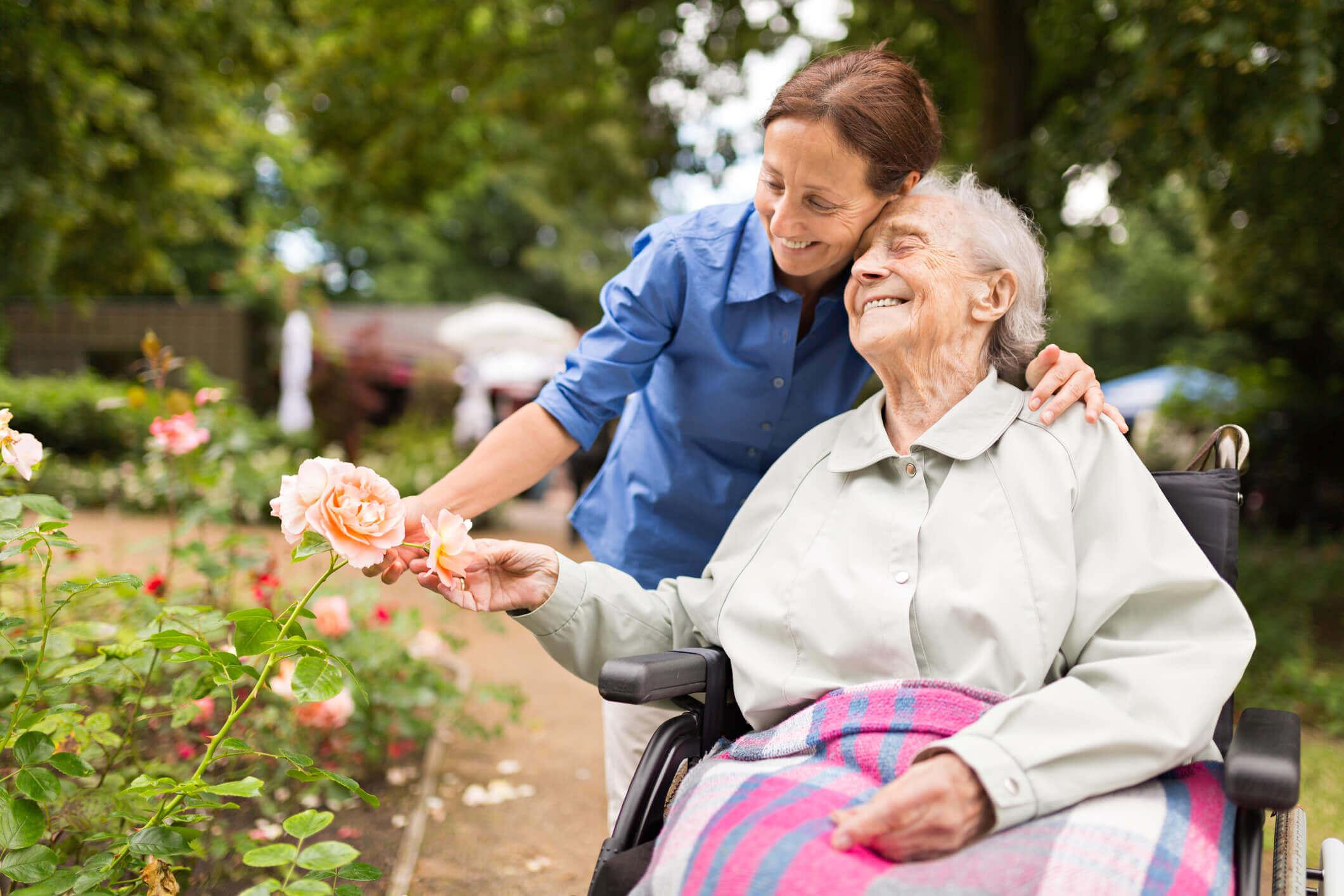 career advice, industry growth, Australia, healthcare, social assistance