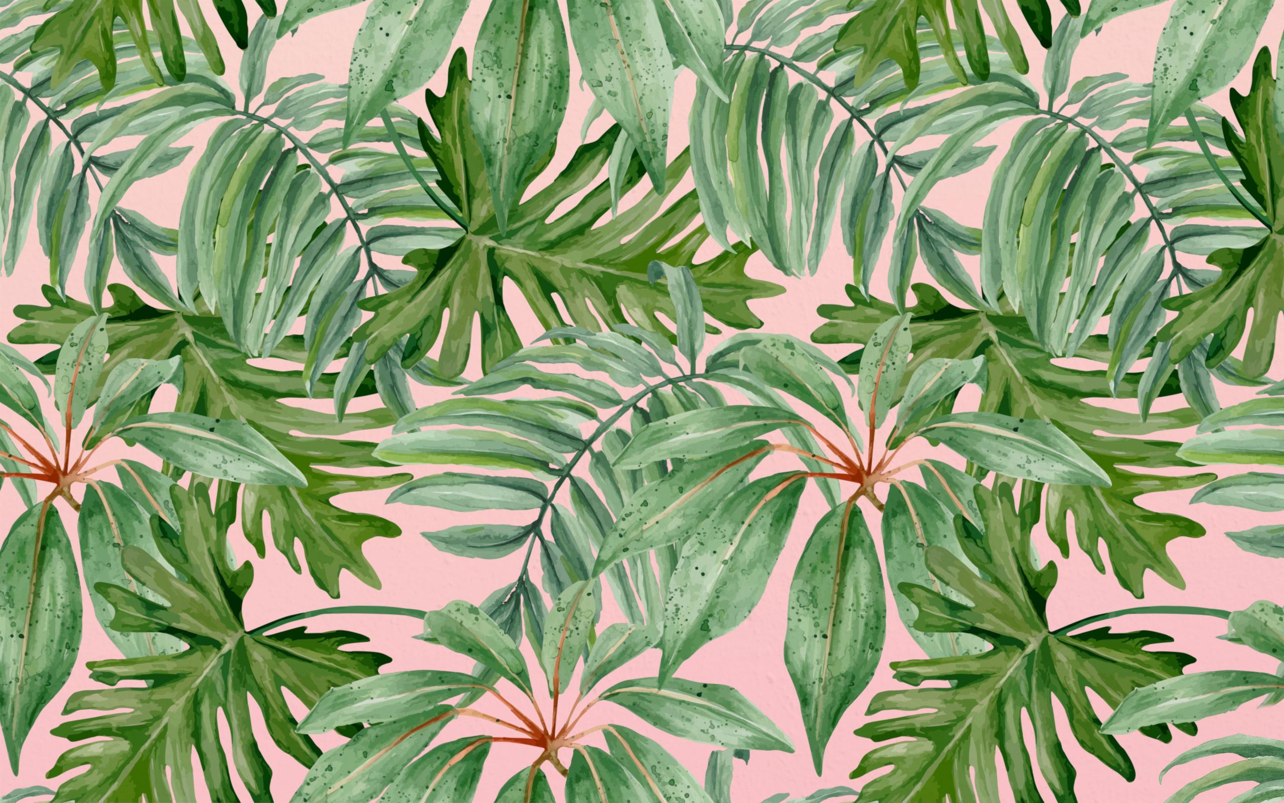 Palms Desktop Wallpaper More Than Motivation Study