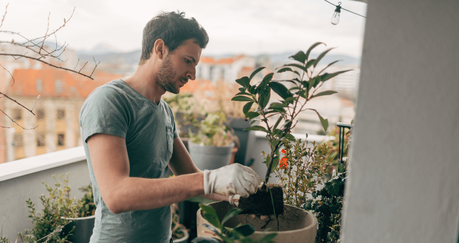 A greener career: why study horticulture courses online?